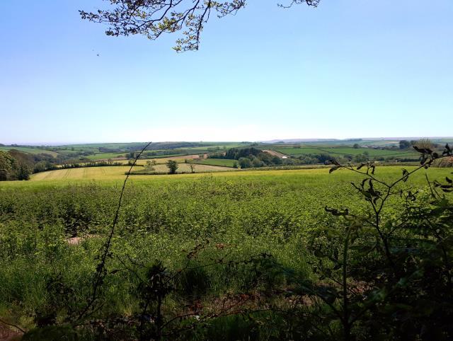 Land West Of Wadstray House, Blackawton, Totnes, Devon