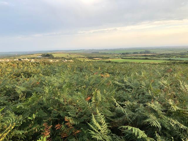 Caer Bran & Land, Sancreed, Penzance, Cornwall